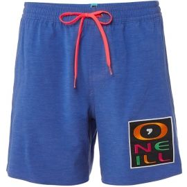O'Neill PM RE-ISSUE LOGO SHORTS